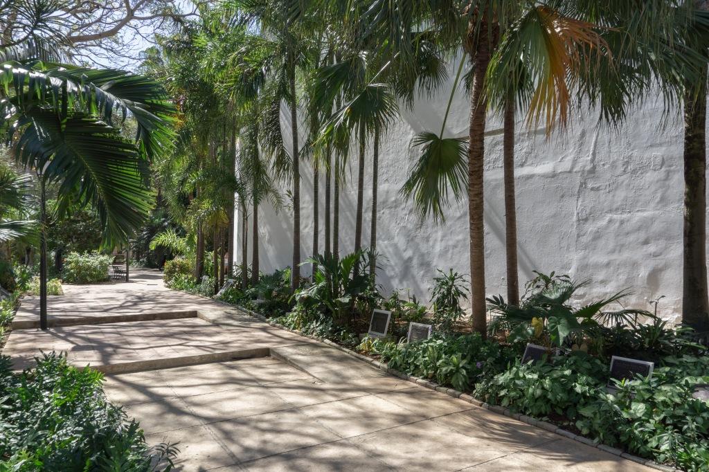 Umnutzung Franz von Assisi Basilika und Kloster zu Museum Garten