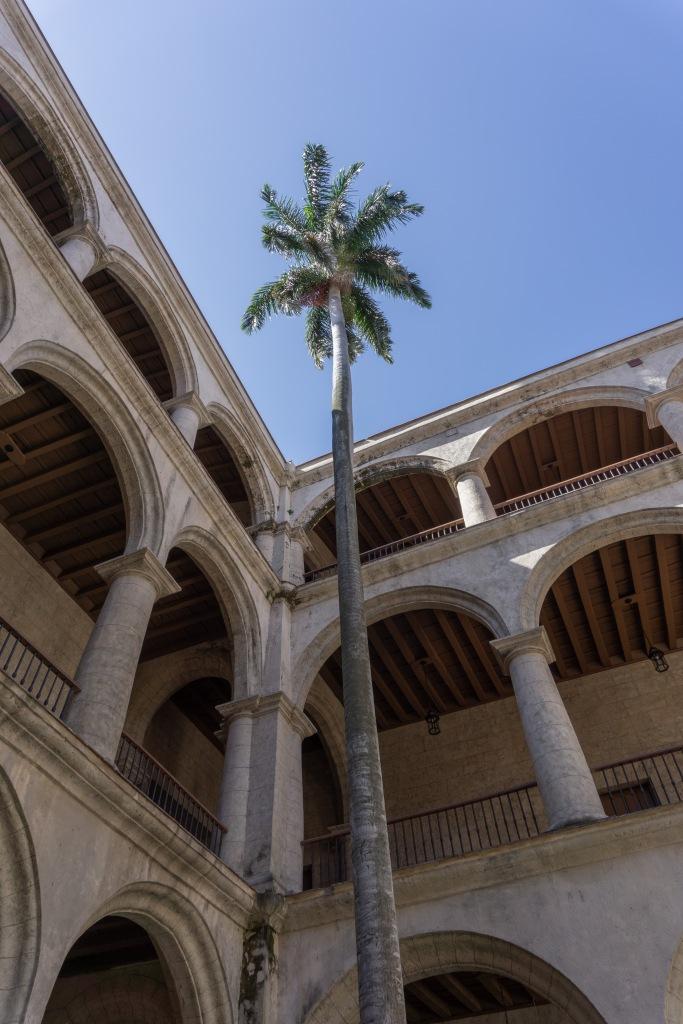 Umnutzung Franz von Assisi Basilika und Kloster zu Museum Palme im Innenhof